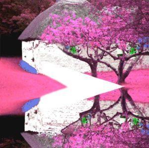 kdk_scarves_pink